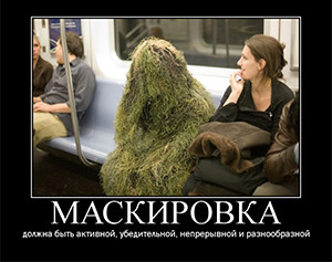 Maskirovka Image source: Mara Luchik