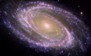 M81 galaxy cropped